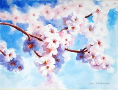 Almond blossom watercolour