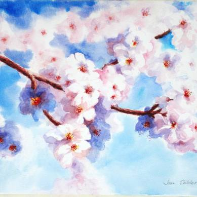 Almond blossom watercolour