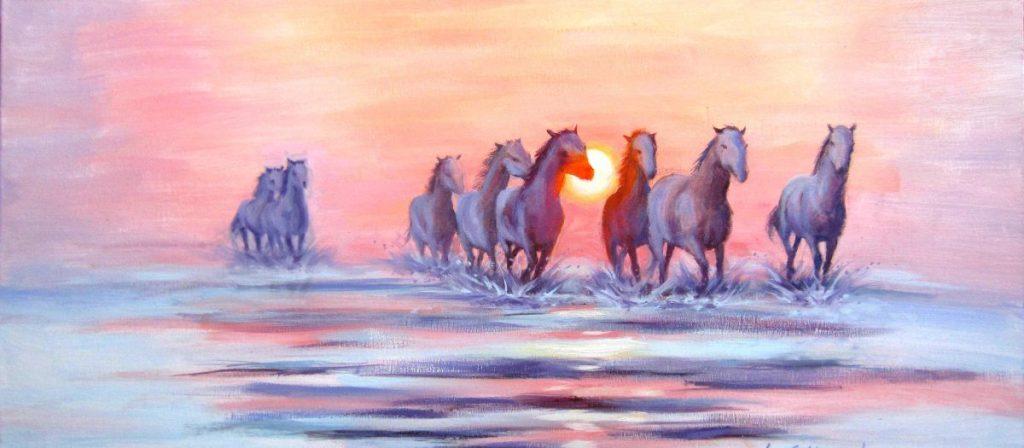 Camargue horses at sunset.