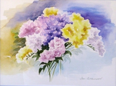 Freesias in sunlight