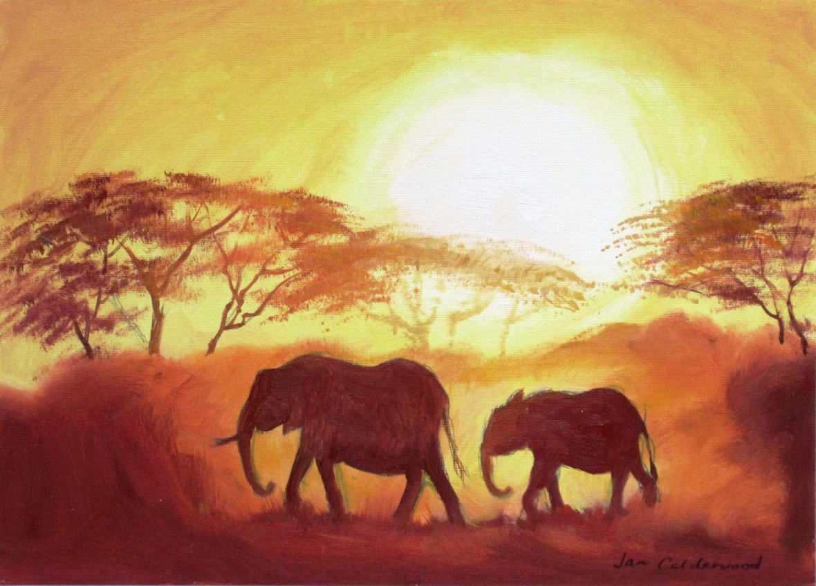 Elephants in the sun