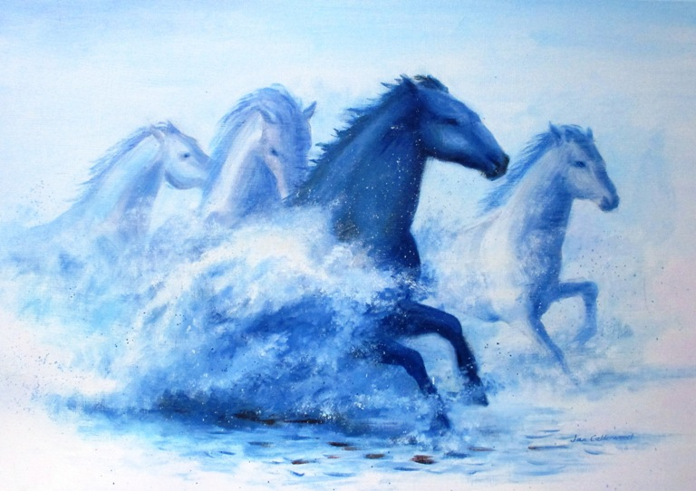 Horses running through water in the Camargue.