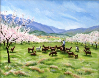 Goats and almond blossom in Spain