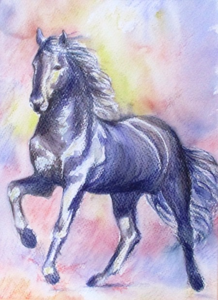 Watercolour painting of black horse